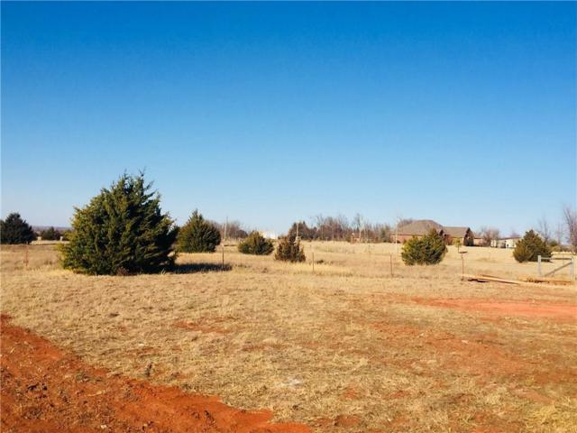 Barrington Place Drive, Blanchard, OK 73010 (MLS #805384) :: Meraki Real Estate