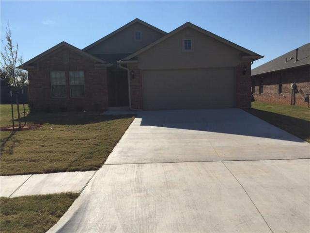 904 Accipiter, Norman, OK 73072 (MLS #810918) :: Erhardt Group at Keller Williams Mulinix OKC