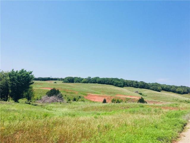 1401 N Indian Meridian Tract 3, Guthrie, OK 73027 (MLS #822274) :: Meraki Real Estate