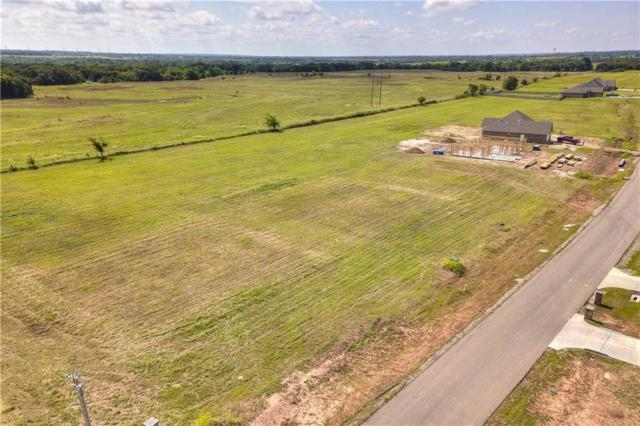 11799 Carefree Lane, Shawnee, OK 74804 (MLS #826991) :: Meraki Real Estate