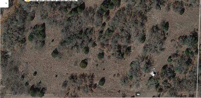 Golden Rod, Blanchard, OK 73010 (MLS #829266) :: Barry Hurley Real Estate