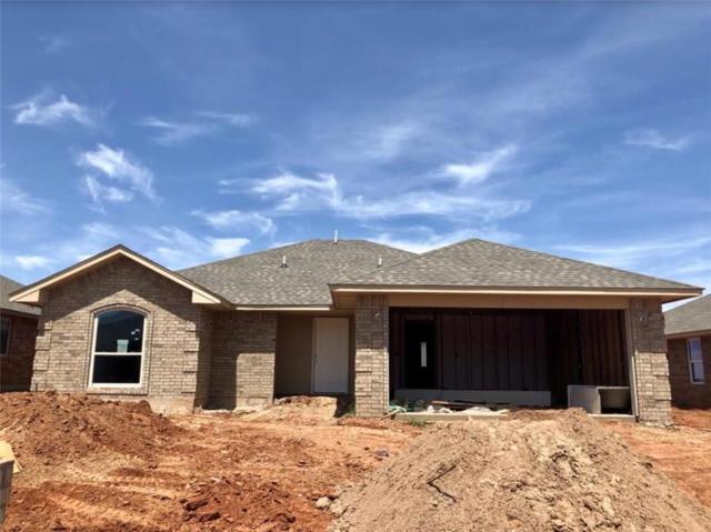 9101 SW 48th Terrace, Oklahoma City, OK 73179 (MLS #836376) :: Barry Hurley Real Estate