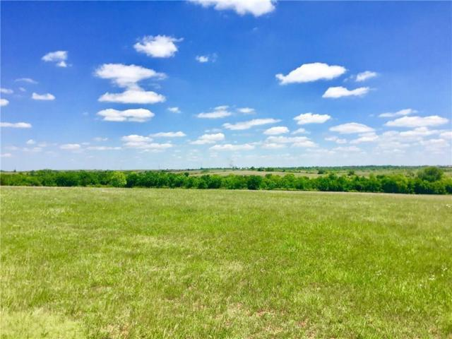 17455 290th Street, Goldsby, OK 73093 (MLS #836610) :: Meraki Real Estate