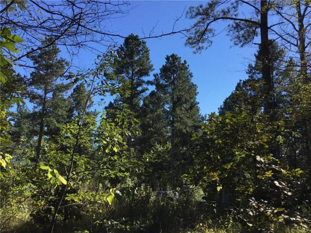 North Fork Trail, Broken Bow, OK 74728 (MLS #840066) :: Wyatt Poindexter Group
