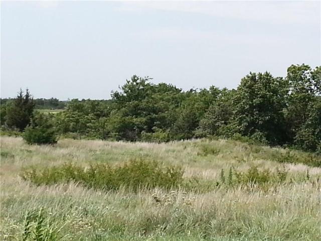 4 Wolf Creek Drive Street, Purcell, OK 73080 (MLS #843484) :: Erhardt Group at Keller Williams Mulinix OKC