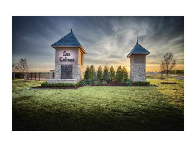3104 Rolling Woods, Norman, OK 73072 (MLS #849843) :: Homestead & Co