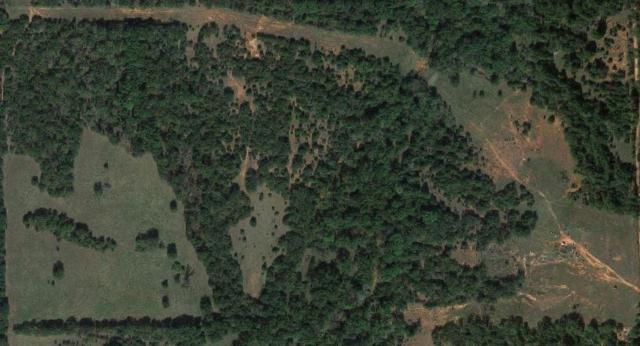 Little River Road, Tecumseh, OK 74873 (MLS #853651) :: Homestead & Co