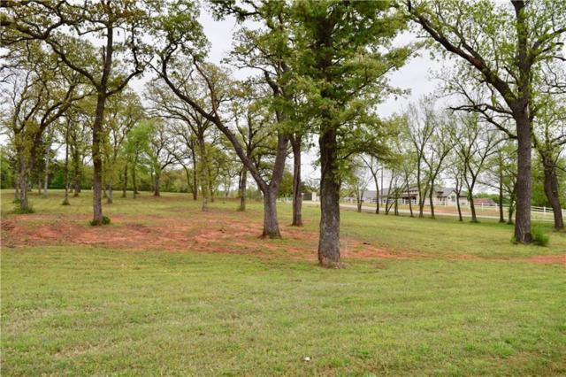 1148 Flaming Oaks, Norman, OK 73026 (MLS #863500) :: Erhardt Group at Keller Williams Mulinix OKC