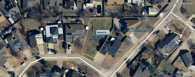 229 SE 28th Moore, Ok Street, Moore, OK 73160 (MLS #875863) :: Denver Kitch Real Estate