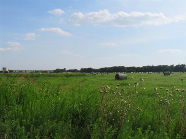 Rural Butler, Butler, OK 73625 (MLS #876750) :: Homestead & Co