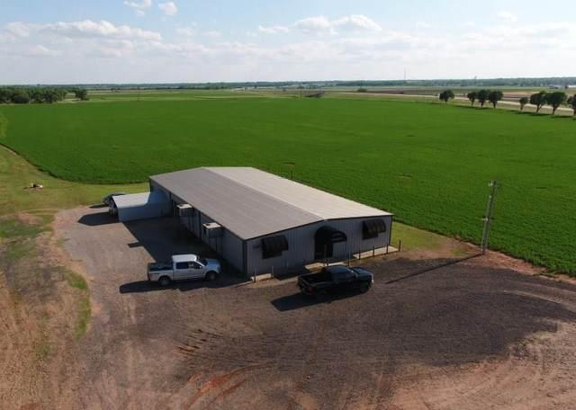 1181 E Choctaw, Chickasha, OK 73018 (MLS #902040) :: Homestead & Co