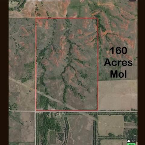 17721 E 0930 Road, Cheyenne, OK 73628 (MLS #906014) :: The UB Home Team at Whittington Realty