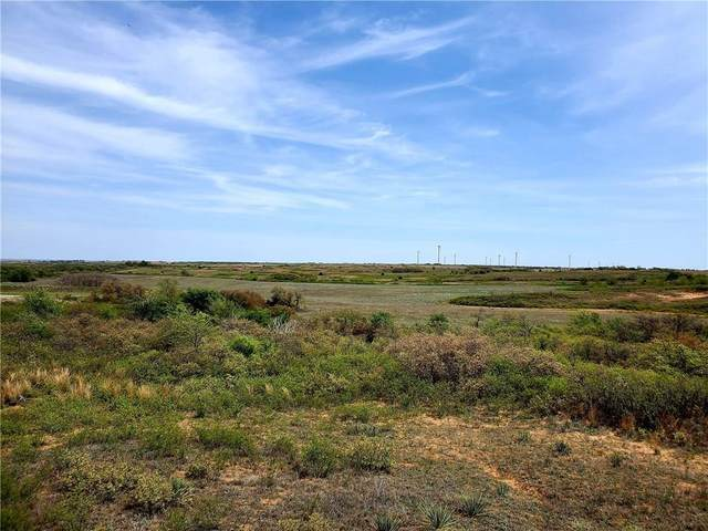 18124 E 1030 Road, Cheyenne, OK 73628 (MLS #909142) :: Homestead & Co