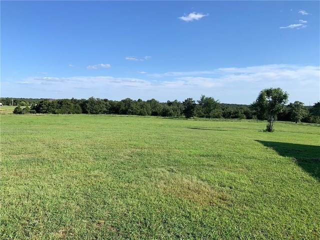 331415 E 875 Road, Wellston, OK 74881 (MLS #923117) :: ClearPoint Realty