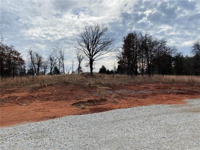 21409 Canyon Road, Pink, OK 74873 (MLS #938845) :: Homestead & Co