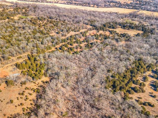 SE 120th Street, Lexington, OK 73051 (MLS #940947) :: Homestead & Co