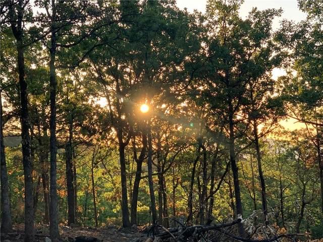 25 Timber Ridge Estates, Tuskahoma, OK 74574 (MLS #960031) :: ClearPoint Realty