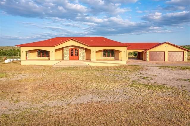 18602 980 Road, Cheyenne, OK 73628 (MLS #963201) :: Homestead & Co