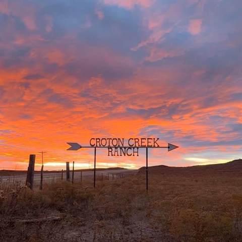9517 N 1802 Road, Cheyenne, OK 73628 (MLS #981113) :: 580 Realty