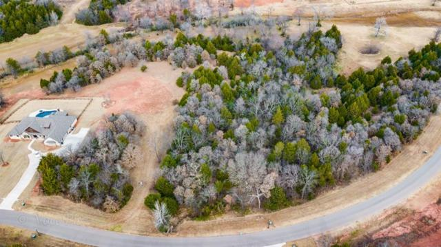 7363 Spring View Drive, Norman, OK 73026 (MLS #721247) :: Homestead & Co