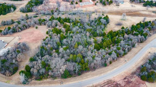 7403 Spring View Drive, Norman, OK 73026 (MLS #721248) :: Homestead & Co