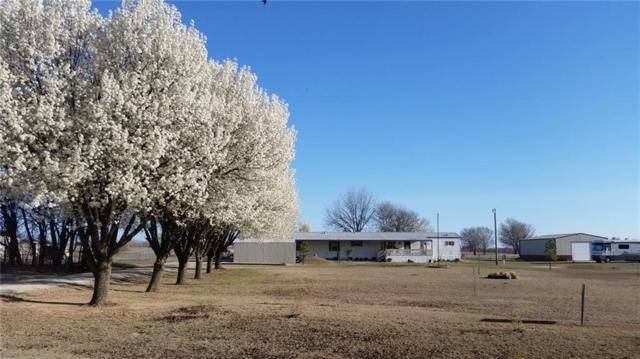 6901 N Sun Country Road, Lexington, OK 73051 (MLS #800055) :: Meraki Real Estate