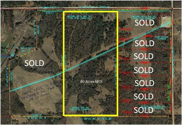 Henney Rd (80 Acres Mol) Road, Guthrie, OK 73004 (MLS #945524) :: Erhardt Group at Keller Williams Mulinix OKC