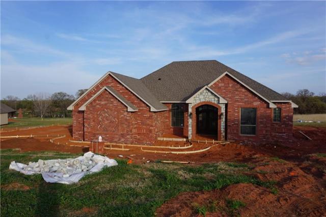 146 Talon Circle, Blanchard, OK 73010 (MLS #804544) :: Barry Hurley Real Estate