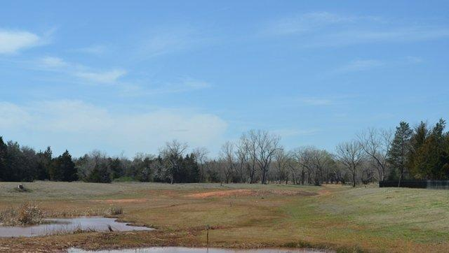 7760 Vista Springs Drive, Norman, OK 73026 (MLS #720250) :: Homestead & Co