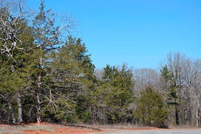 7243 Spring View Drive, Norman, OK 73026 (MLS #721241) :: Wyatt Poindexter Group