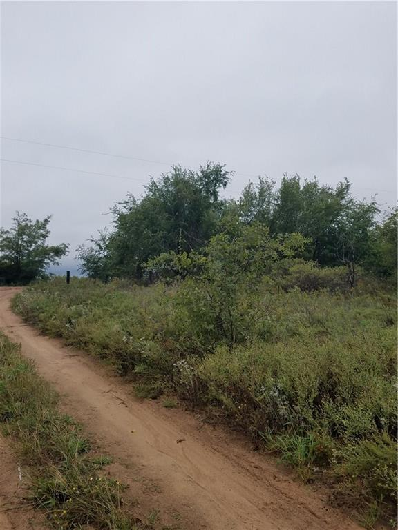 County Road 156, Blair, OK 73526 (MLS #792878) :: Wyatt Poindexter Group
