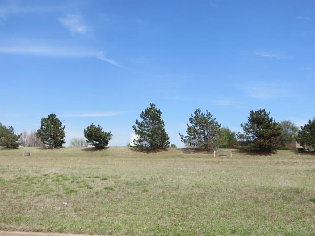 Pondridge Road, Chickasha, OK 73018 (MLS #816982) :: UB Home Team