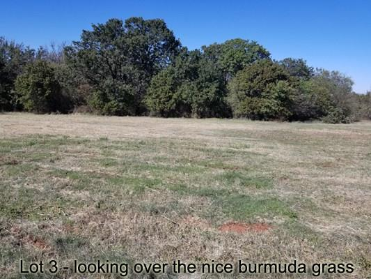 301 N. Morgan Ave, Blanchard, OK 73010 (MLS #819741) :: Homestead & Co