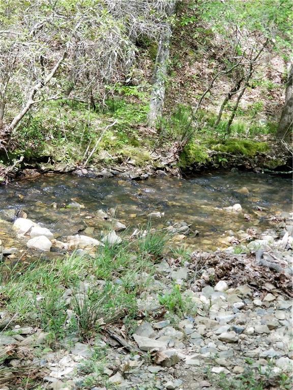 Eppler Creek Road - Photo 1