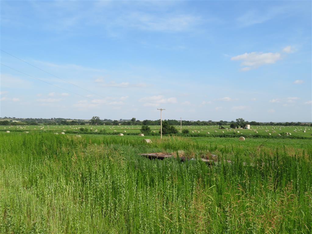Rural Butler - Photo 1