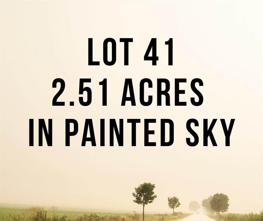 Lot #41, 2.51 Acre Lot - Photo 1