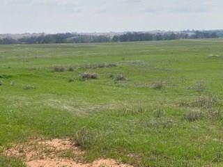 807 Cemetery Road, Tuttle, OK 73089 (MLS #907739) :: Homestead & Co