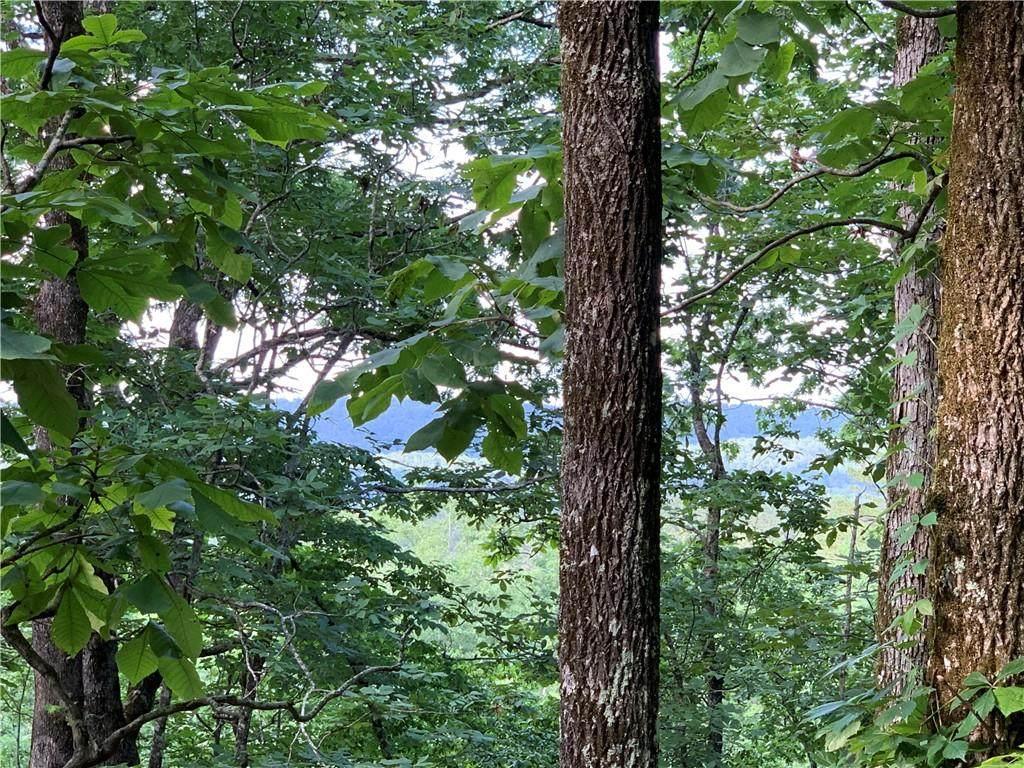 Moonshine Springs Road - Photo 1