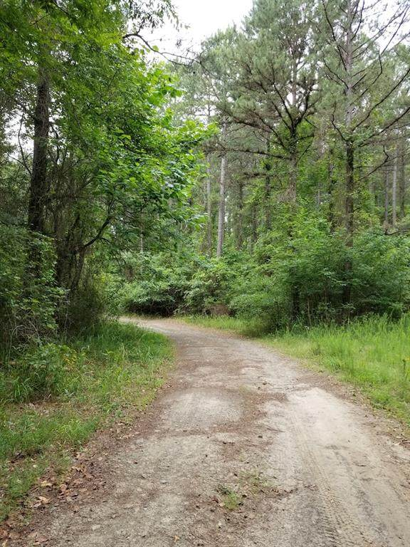 Trout Creek Road - Photo 1