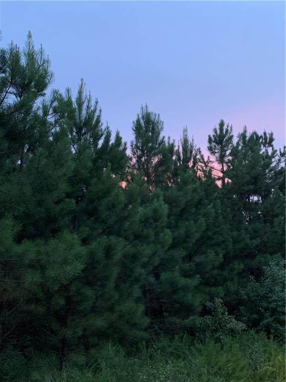 94 Ruts Pine Loop - Photo 1