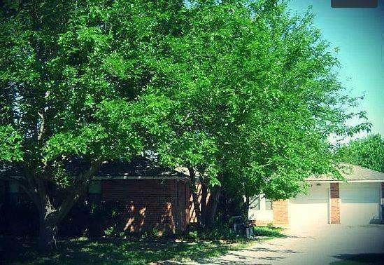 9507 Ritter Road, Oklahoma City, OK 73162 (MLS #972246) :: The UB Home Team at Whittington Realty