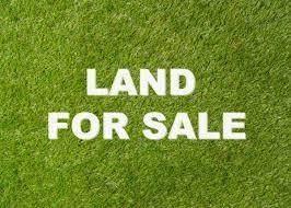 13200 Banner Road, Lexington, OK 73051 (MLS #976420) :: Maven Real Estate