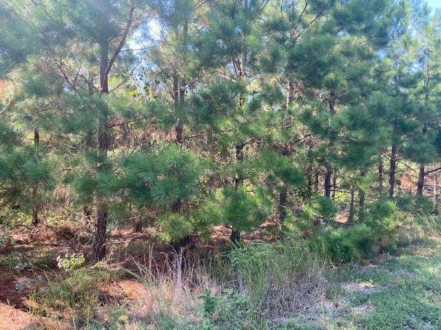 Lot 50 Crooked Stick Trail, Broken Bow, OK 74728 (MLS #976724) :: Homestead & Co
