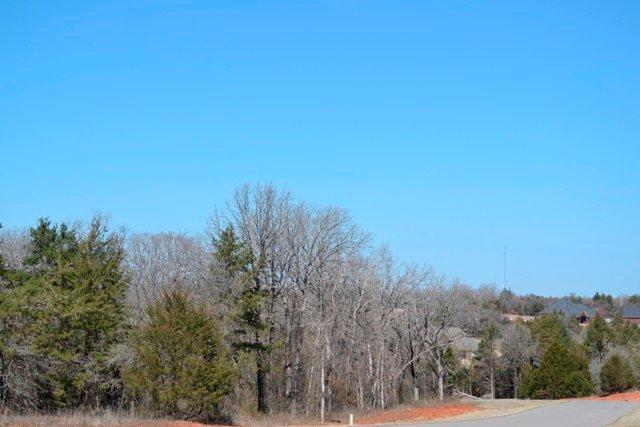 7203 Spring View Drive, Norman, OK 73026 (MLS #721238) :: Wyatt Poindexter Group