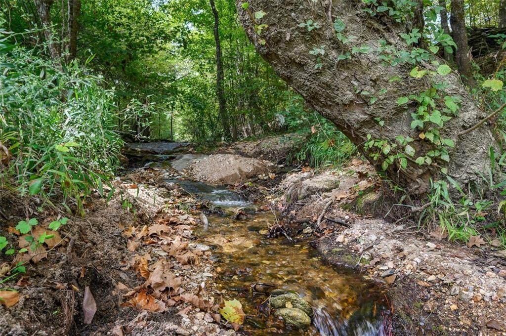 Hidden Pines Loop - Photo 1