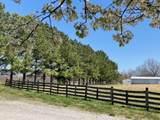 4954 Caney Creek Road - Photo 2