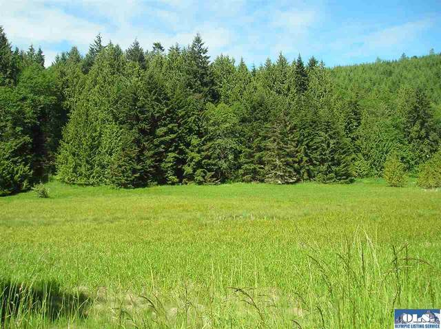 NNN Lost Mountain Road, Sequim, WA 98382 (#291123) :: Priority One Realty Inc.