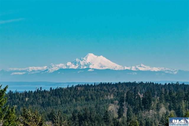 Lot B Lochow Rd, Sequim, WA 98382 (#330502) :: Priority One Realty Inc.