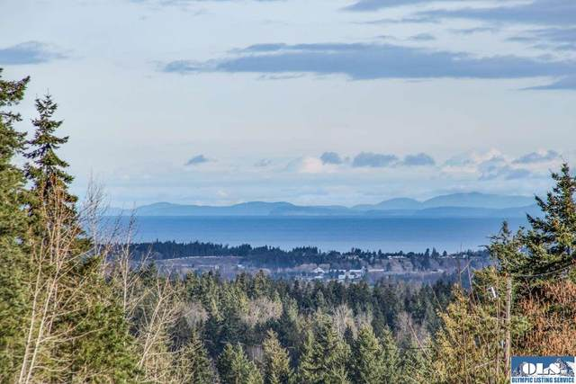 Lot C & D Lochow Rd, Sequim, WA 98382 (#330503) :: Priority One Realty Inc.