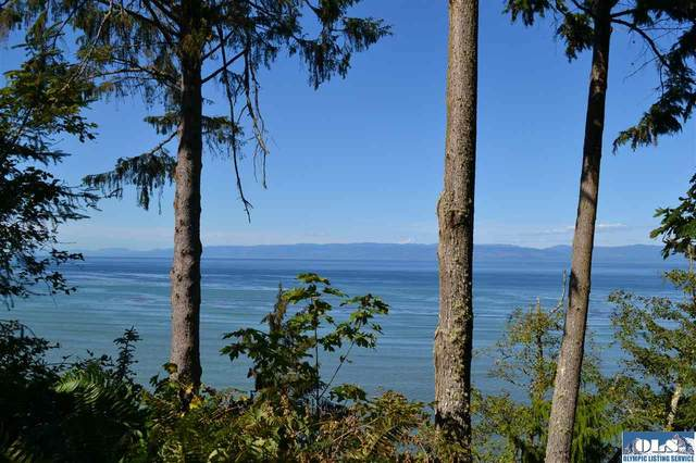 9999 E Dew Knot Enter Road, Port Angeles, WA 98363 (#331614) :: Priority One Realty Inc.